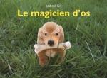 magicienos.jpg