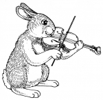 lapin violon.jpg