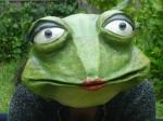 bal des grenouilles.jpg